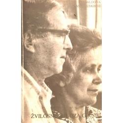 Vasiliauskienė Aldona - Žvilgsnis į Juozą Girnių