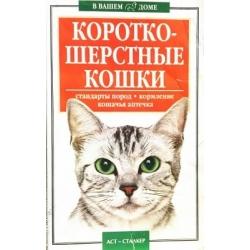 Короткошерствные кошки