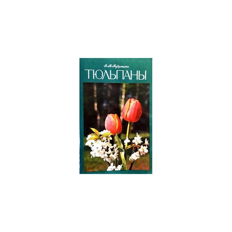 Кудрявцева В.М. - Тюльпаны