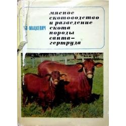 Мацкевич В.В. - Мясное скотоводство и разведение скота породы санта-гертруда