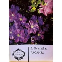 Kvarinskas Z. - Raganės