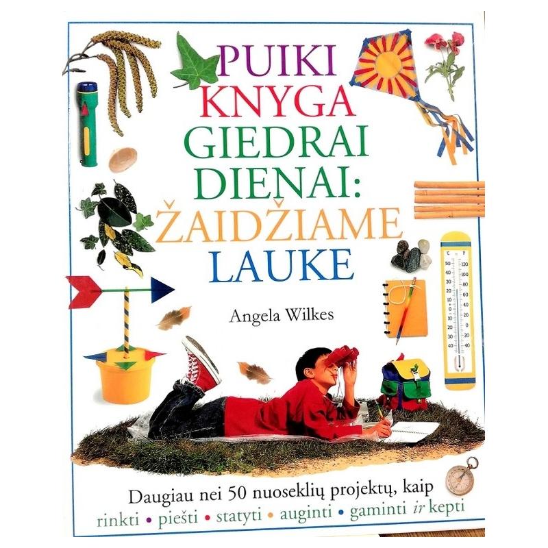 Wilkes Angela - Puiki knyga giedrai dienai: žaidžiame lauke
