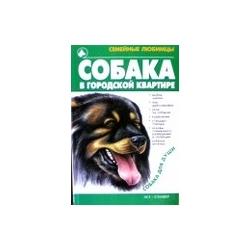Маслаков Артем - Собака в городской квартире
