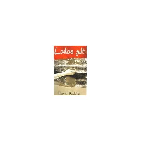 Baddiel David - Laikas gulti