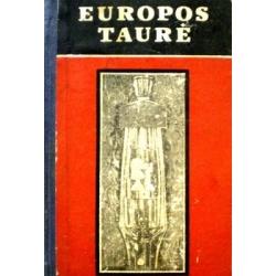 Europos taurė